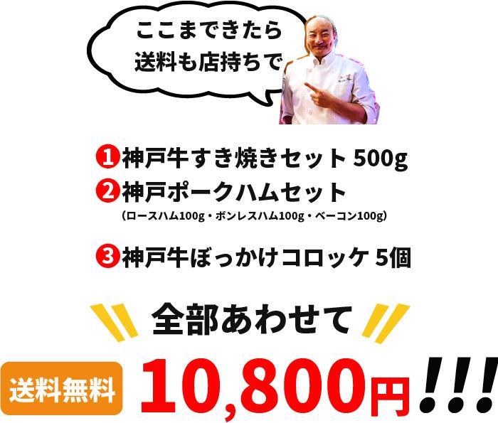 送料無料で10800円