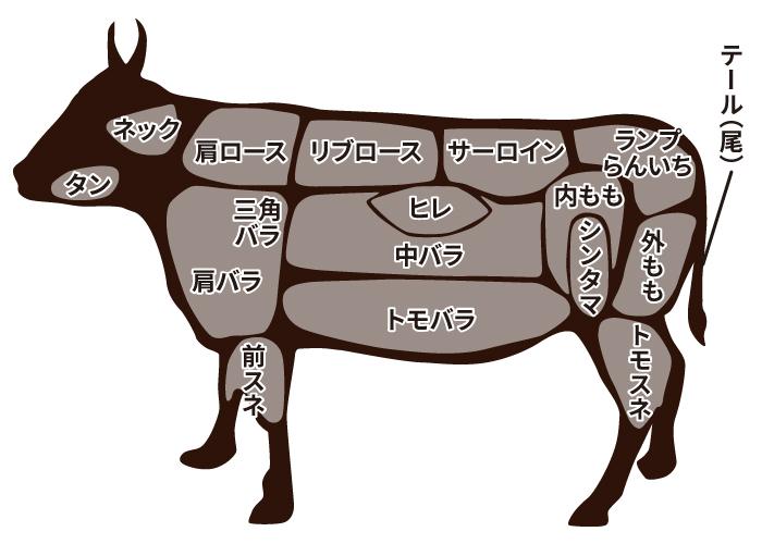 神戸牛の部位|神戸牛の通販なら【名産神戸肉旭屋】